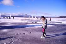 Bruslaři i příznivci ledového jachtingu byli v neděli před polednem vidět na zamrzlé hladině jezera v Černé v Pošumaví.