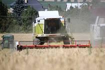 Zdá se, že letošní úroda na Krumlovsku bude dobrá.