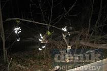 Hasiči při odstraňování popadaných stromů. Ilustrační foto