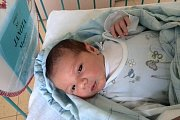 Martin Janota je první potomek novopečených velešínských rodičů Olgy Kneiflové a Karla Janoty. Chlapeček se narodil vsobotu 11. dubna 2015.