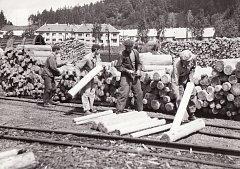 Bývalý dřevosklad na místě, kde dnes stojí loučovická teplárna, patrně 50. až 60. léta 20. století.