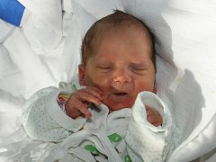 Sofie Anna Bezdíčková se narodila 19. června 2010 čtvrt hodiny před půlnocí. Potomek Gabriely a Milana Bezdíčkových ze Starých Hodějovic měřil 47 centimetrů a vážil 3060 gramů. Doma na Sofii čekala sestra Emma, které brzy bude dva a půl roku.