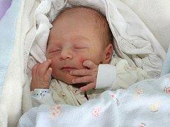 """Matěj Kotek je prvním miminkem Markéty a Petra Kotkových z Dolního Dvořiště. U porodu, který proběhl 3. prosince 2010 v 7 hodin a 19 minut, tatínek nechyběl. """"Ještě plánujeme holčičku Aničku,"""" řekla Markéta Kotková. Matěj měřil 49 cm a vážil 2,91 kg."""