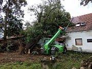 V Markvarticích spadla letitá lípa na jedno stavení.