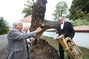 Rodáci z Mladošovic oslavili v sobotu úctyhodné stáří obce i štěstí, které měli místní v noční bouřce. V zrostlý strom v blízkosti kostela spadl totiž přesně na místo, kde napáchal jen minimální škodu.