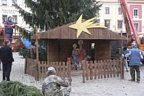 Včera se na náměstí opět přestěhoval Ježíšek s Marií a Josefem, které zahřívá volek s oslíkem i ovečkami. Zpod vánočního stromu budou hledět na trhy, které odstartují v pátek.