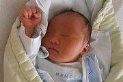V neděli 1. listopadu 2015 v 1 hodinu a 30 minut se v českobudějovické porodnici narodil chlapec jménem Hong Dang Ly. Bydlet bude v Kaplici po boku staršího bratra narozeného ve Vietnamu, který se na malého sourozence už moc těšil.