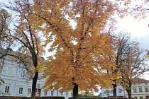 Podzim ve Vyšším Brodě.