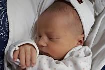 Ema Balková se narodila v pátek 18. ledna 2019 velešínským rodičům Veronice Schwarzové a Janu Balkovi. Její míry byly 48 centimetrů a 2 880 gramů.