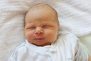 Tříletá Vilma se ve středu 27. července 2016 devět minut po 18. hodině dočkala malého brášky. Alfréd Honner se mohl pyšnit mírami 51 cm a 3915 g. Dokud to šlo, Alena a David Honnerovi byli u porodu společně. Rodina bydlí vČ. Budějovicích.
