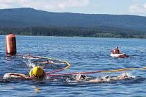 Ve vodách Lipna bojovalo při Mezinárodním plaveckém závodě a ČP v dálkovém plavání 250 borců.