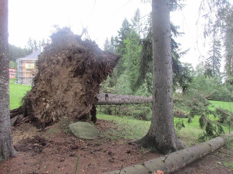 Silný vítr vyvrátil stromy v parku kolem bývalé Porákovy vily v Loučovicích. Foto: Vlasta Slípková