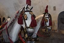 Můžete si prohlédnout expozici v zámecké konírně v Českém Krumlově.