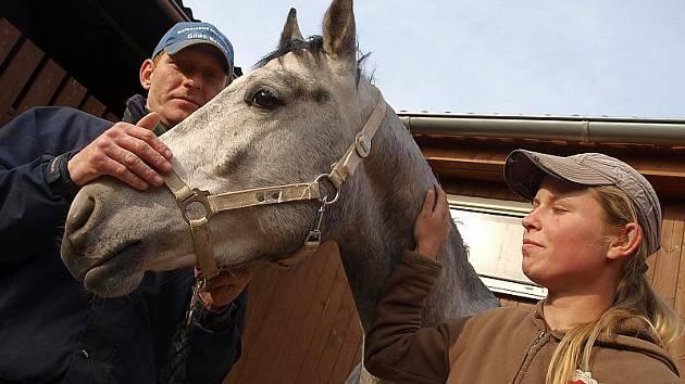 Jan Papoušek ve své srnínské stáji společně s čtyřnohým šampionem Conradem a Hankou Ondruškovou, jež Papouškovým pomáhá s péčí o koně.