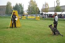 Dospělí i děti a to nejen v kategorii dvounohých, ale i čtyřnohých psích závodníků, si o víkendu dali dostaveníčko ve Velešíně na dalším z řady Mistrovství republiky v kynologii v takzvané kategorii IPO, kde se hodnotí poslušnost, obrana a stopa.