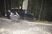 Při nehodě u Netřebic vyhasl mladý život. Škoda na autě je odhadnuta na 60 000 korun.