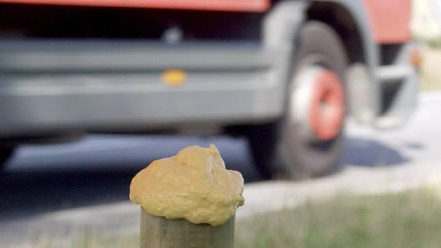 Speciální pěna na kůlech či stromech kolem silnic v regionu se přibližně jednou za dva měsíce napouští roztokem, který zvěři připomíná pach lidského potu. Na snímku je zachycen pachový ohradník u komunikace E 55 mezi Kaplicí a Kaplicí Nádražím.