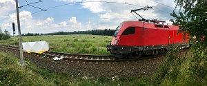 Muž přišel o život na trati mezi Omlenicemi a Bujanovem.