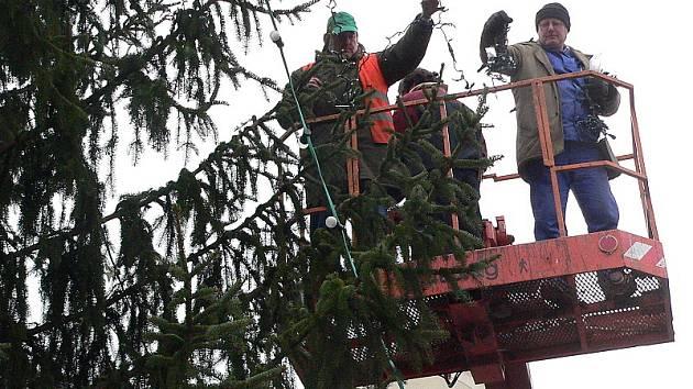 Vánoční strom na náměstí v Českém Krumlově již ční k nebesům a je přichystán na slavnostní rozsvícení o první adventní neděli. Ve čtvrtek ho světelnými hvězdami a dalšími světýlky obetkali pracovníci Služeb města.