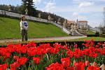 Zámecká zahrada v Českém Krumlově rozkvetla, rozzářily ji hlavně tulipány.