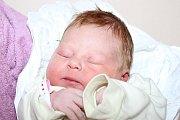 Klára Remsová a Jan Čížek přivedli ve čtvrtek 3. září 2015 ve 4:16 společnými silami na svět prvorozenou Barboru Čížkovou, holčičku měřící 51 centimetrů a vážící 3650 gramů. Rodina bydlí vČeském Krumlově.