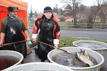 Ryby na vánoční stůl si můžete koupit například v Českém Krumlově U Zelené ratolesti na Plešivci.