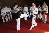 Seminář trenérů taekwon-do v Hrdoňově.
