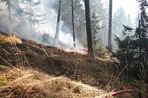 Úterní požár lesa a trávy ve Vyšném likvidovali hasiči asi tři hodiny.
