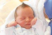 Ve středu 9. prosince 2015 všest hodin ráno spatřil světlo světa 50 centimetrů měřící a 3410 gramů vážící Vojtěch Kollar. Na chlapečka Simony a Stanislava Kollarových ze Zahořánek doma čekal téměř dvouletý bráška Matyáš. Tatínek u porodu asistoval.