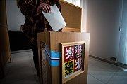 Volby v Dolním Dvořišti.