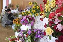 Výstava květin v Křemži.