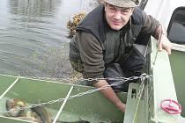 Velešínští rybáři rozváželi násadu kapra a pstruha.