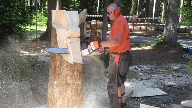 Slavnosti dřeva se konaly u lipenské stezky v korunách stromů.