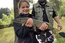 Rybářská soutěž Zlatá udice ve Větřní.