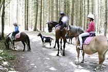 Mladí jezdci strávili týden na táboře.
