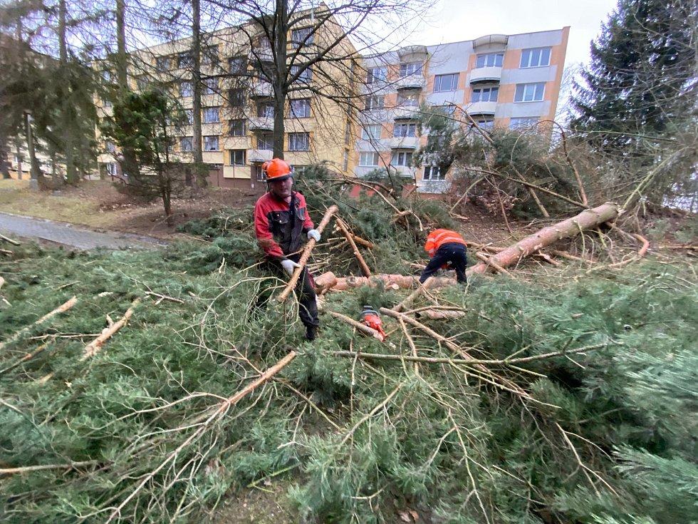 Popadané stromy ve Velešíně. Stromy tam spadly také na elektrické vedení u čistírny opdadních vod, která je bez proudu.
