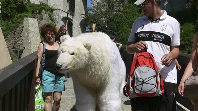 Lední medvědi v Českém Krumlově