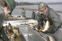 Výlov rybníka Olšina zabral rybářům téměř celý den.