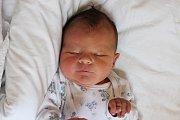 Adélka Pivcová je prvním potomkem Lucie Rajtolarové a Václava Pivce zČerné vPošumaví. Holčička vykoukla na svět vneděli 11. září 2016 ve 23 hodin a 26 minut, měřila 50 centimetrů a vážila 3110 gramů. Tatínek u porodu asistoval.