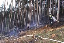 Požár lesa u Omlenice.