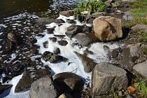 Pěnu ve Vltavě mají na svědomí přírodní procesy.