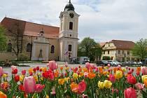 Jarní procházka Týnem nad Vltavou.