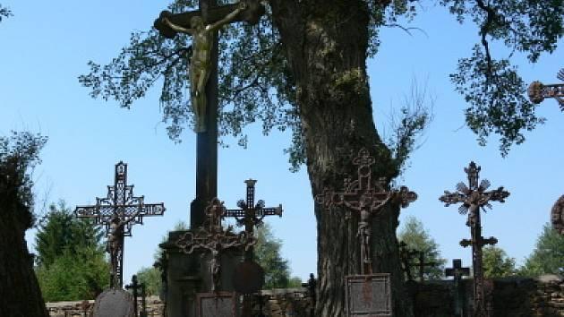 Malebné prostředí hřbitova narušují padající větve.