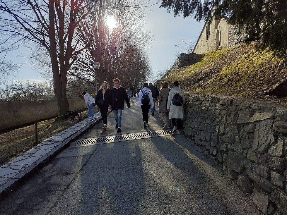 Cesta k zámecké zahradě.