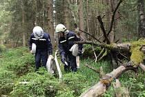 Hasiči z Českých Budějovic, Českého Krumlova a Prachatic cvičili spolu s rakouskými i německými kolegy práci v nepřístupném terénu.