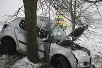 Po smyku fabie narazila bokem do stromu. To se stalo řidiči osudným.