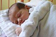 Prvorozený Lukáš Janura se novopečené mamince Radce Janurové zBřezí narodil ve čtvrtek 24. září 2015 v17:23 smírami 52 centimetrů a 3500 gramů. Tatínkem nedávno narozeného chlapečka je Lukáš Mašek.