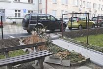 Parkovací místa blokují branky.