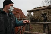 Chovatel Luboš Marek dal jména pouze pštrosím samcům. Zde je Evžen, v jiném výběhu je Matěj.