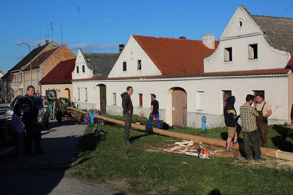 V Besednici stavbu májky na návsi sledovali diváci všeho věku. A mezi nimi i čarodějnice.